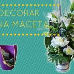 Ideas para Decorar una Maceta